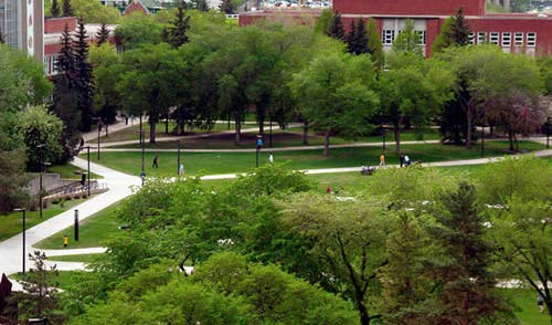 Forest Landscape Campus Master Plan