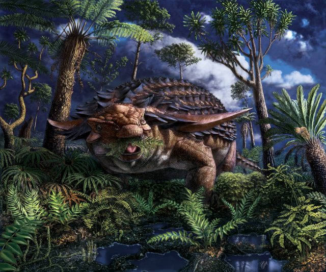 Illustration of a spiny dinosaur as it stands among many plants and trees. The dinosaur is eating some of the ferns