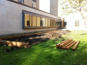 Construction of Brandon University Healthy Campus Community Garden, 2014 (web)pg