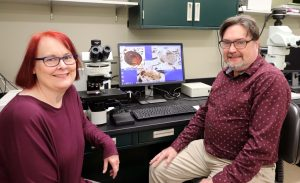 A woman and a man smile as they set with a microscope and a computer monitor showing fossils between them