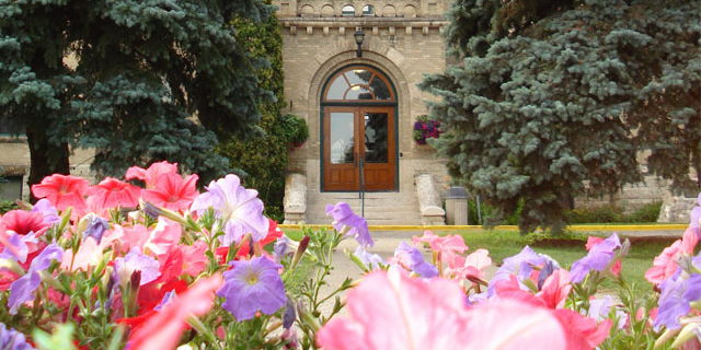 A brick building with a wooden door is seen in the background, with bright pink and purple flowers in the foreground
