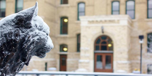 Bobcat statue in winter
