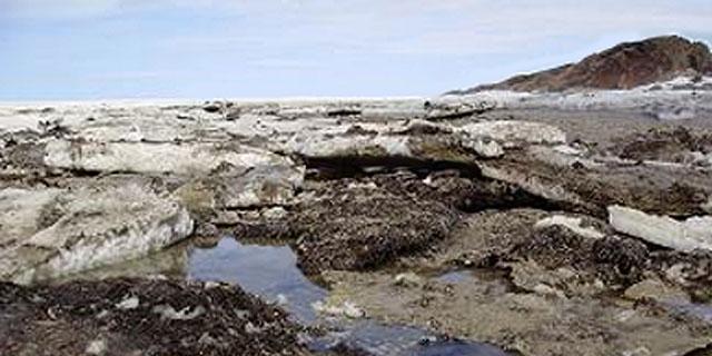 Shoreline in Churchill, Manitoba