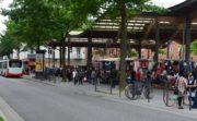 What do racialized residents of Hamburg, Germany, think about local planning and development?