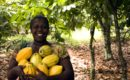 Examining the participation of women in the formulation of agriculture policies